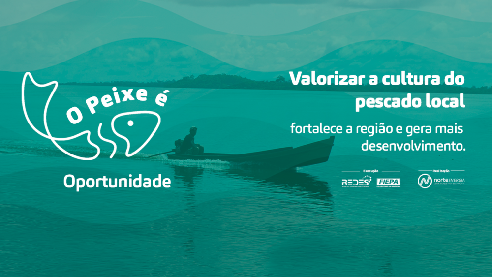 Campanha visa estimular o fortalecimento da cultura do pescado no Pará