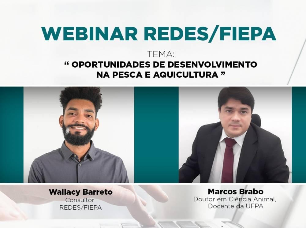 Em webinar, especialistas falam sobre o mercado de pesca e aquicultura no Pará